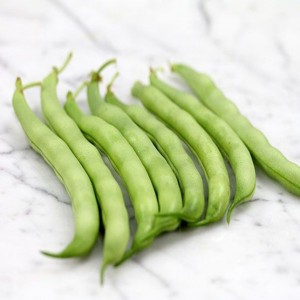 Bean Roma Broad (Bush) - stringless edible