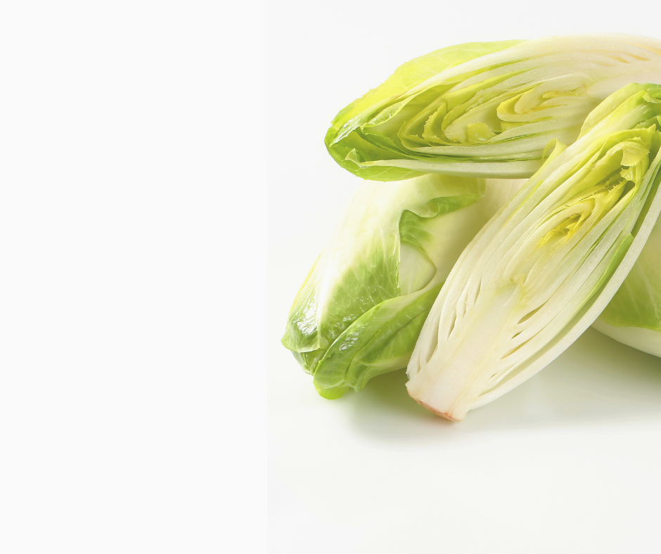 Chicory Endive Seeds